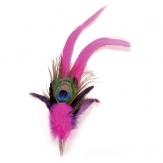 Feder Pfauenauge Pink